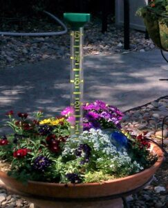 Put a rain gauge in your pot to know how much water has fallen