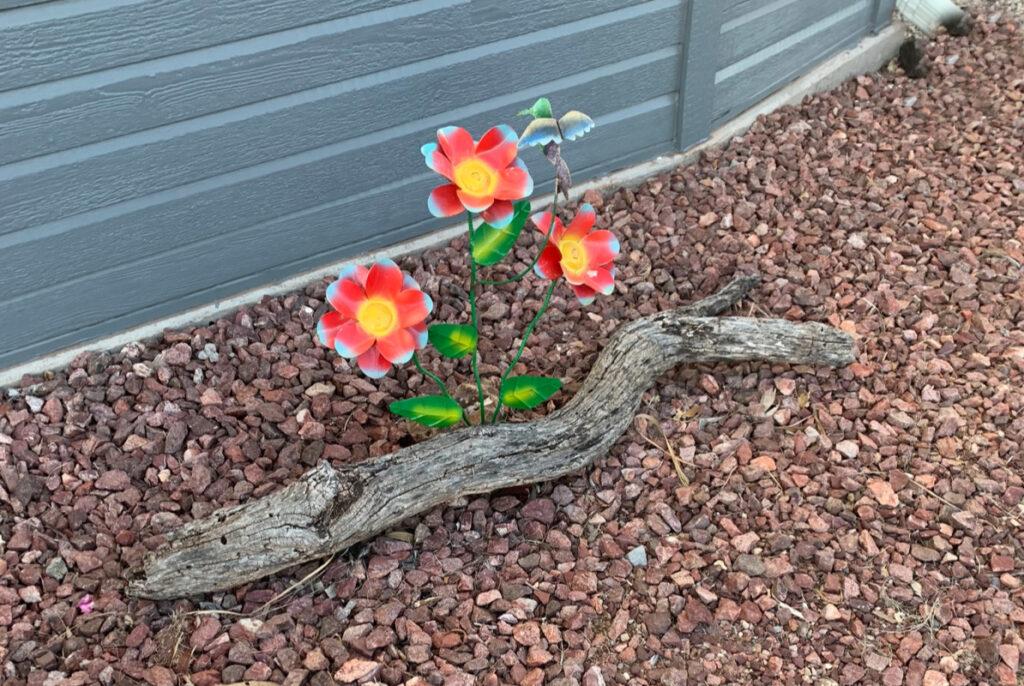Metal sculptures can enhance your desert garden