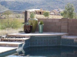 Desert Patio Hardscape softened by pots