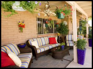 Desert Patio Garden with Blues and Yellows